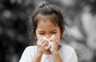 雾霾之下 选择新风系统还是空气净化器?
