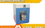微生物PID控温电热式培养箱