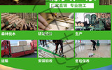 歐氏專業運動木地板運動館地板籃球場地板楓木楓樺木單/雙龍骨結構
