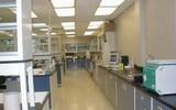 食品檢測類實訓室整體解決方案