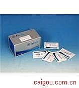 小鼠CG,绒毛膜促性腺激素Elisa试剂盒