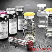 人类风湿因子(RF)ELISA试剂盒
