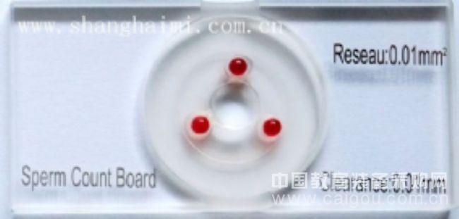 紅寶石精子計數板