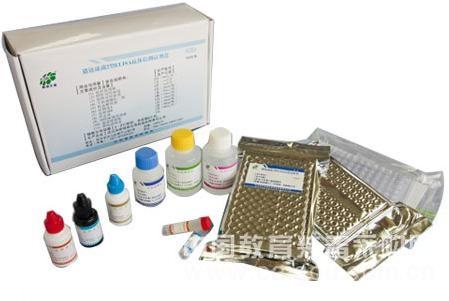 小鼠内脂素/内脏脂肪素(visfatin)ELISA试剂盒