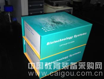 小鼠上皮中性粒细胞活化肽-78(mouse ENA-78)试剂盒