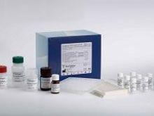 人水通道蛋白2(AQP-2)Elisa试剂盒