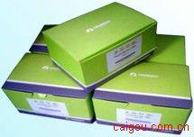 Tissue DNA Kit