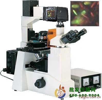 研究型荧光显微镜