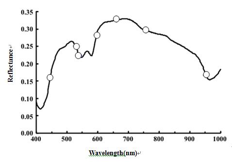 高光谱成像仪的生鲜鱼无损检测技术