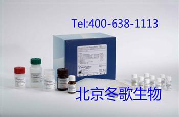 HumanⅡ型胶原螺旋肽,人(HELIX-Ⅱ)elisa试剂盒