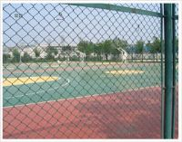 球場圍欄網